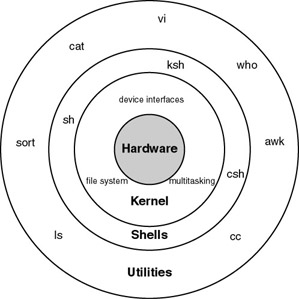 Basic Shell Script Overview